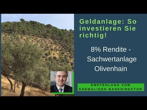 GELDANLAGE Sachwert: So investieren Sie RICHTIG! 8% Rendite – Ihr Olivenhain